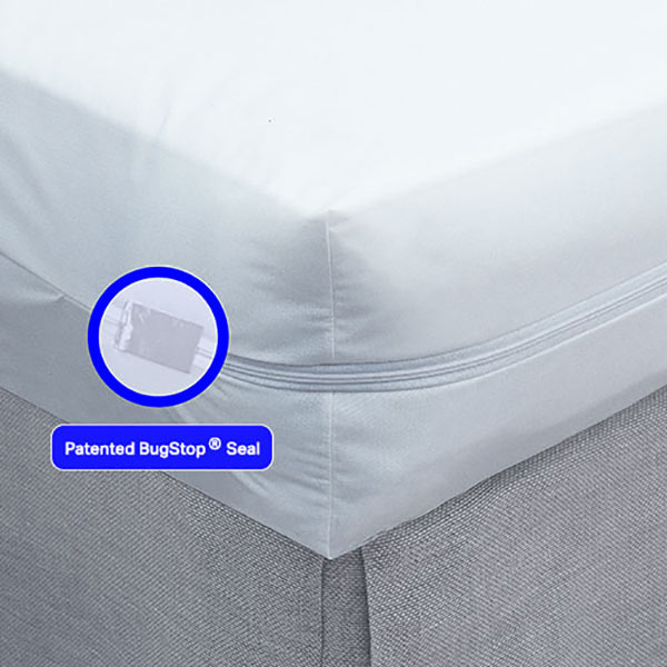 bed bug box mattress encasement ny - bed bug products